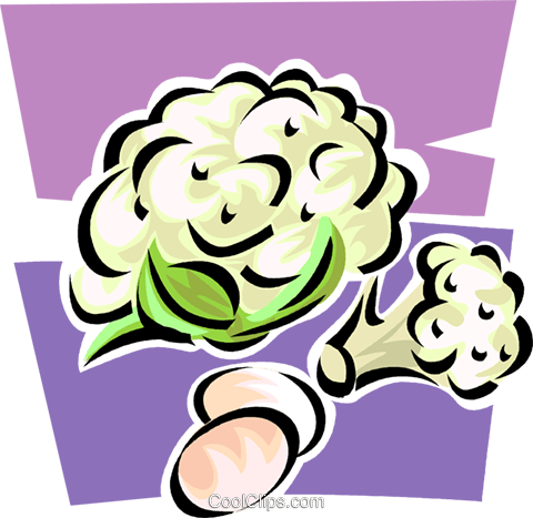 cauliflower Royalty Free Vector Clip Art illustration vc062892