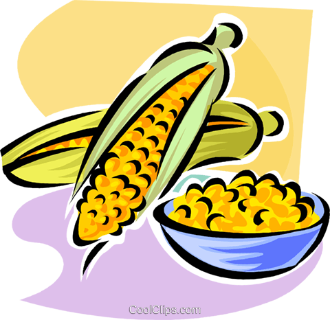 corn on the cob Royalty Free Vector Clip Art illustration vc062897