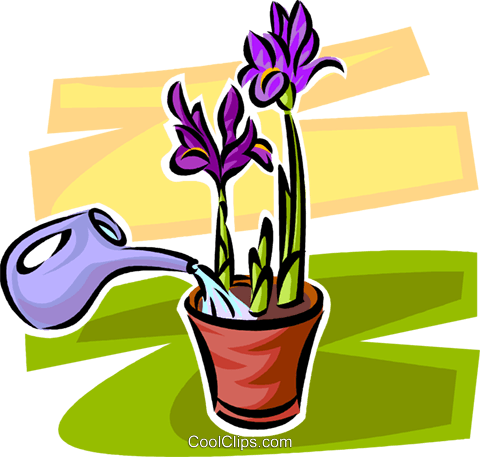 watering plants with a watering can Royalty Free Vector Clip Art illustration vc062926