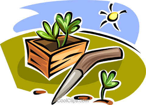 plants in a planter Royalty Free Vector Clip Art illustration vc062989