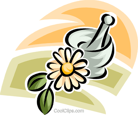 mortar and pestle Royalty Free Vector Clip Art illustration vc063225