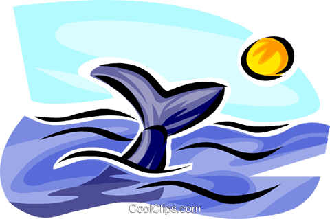 whale watching Royalty Free Vector Clip Art illustration vc063731