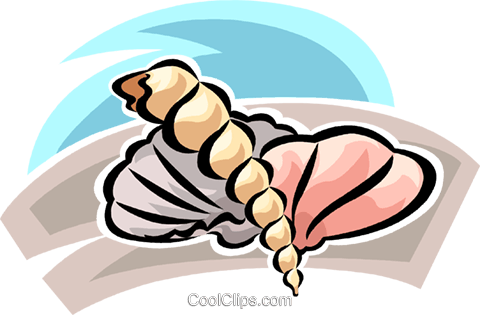seashell Royalty Free Vector Clip Art illustration vc063768