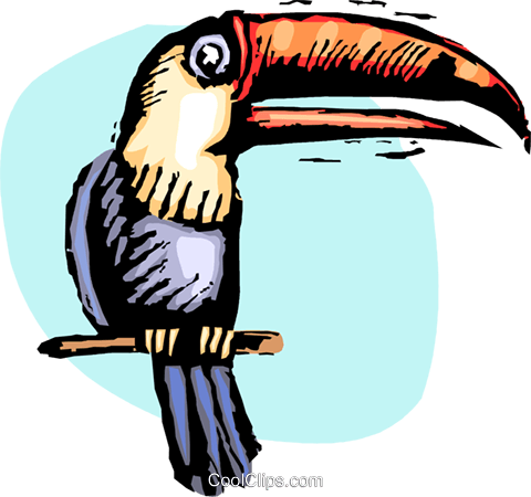 Toucan on perch Royalty Free Vector Clip Art illustration vc063847
