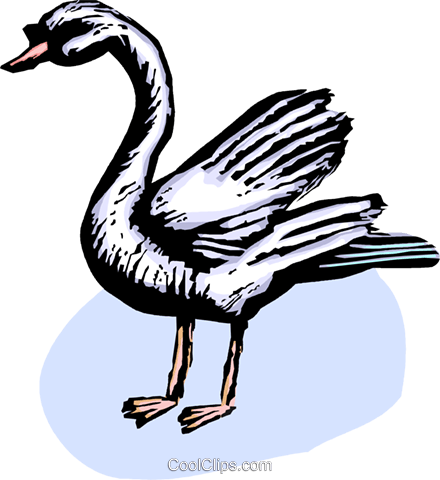 Swans Royalty Free Vector Clip Art illustration vc063848