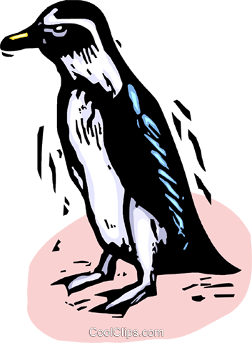 Penguins Royalty Free Vector Clip Art illustration vc063854