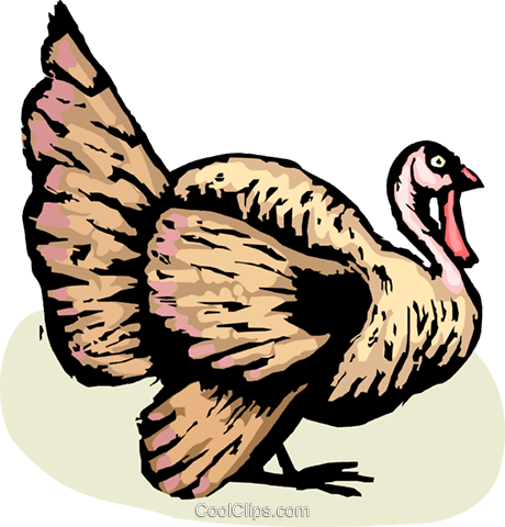 Turkeys Royalty Free Vector Clip Art illustration vc063855