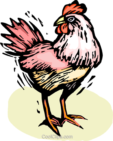 Roosters Royalty Free Vector Clip Art illustration vc063862