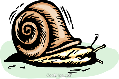 Snails Royalty Free Vector Clip Art illustration vc063863