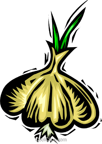 Garlic Royalty Free Vector Clip Art illustration vc063926