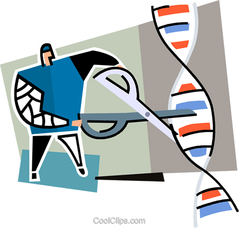 person cutting a strand of DNA Royalty Free Vector Clip Art illustration vc064938