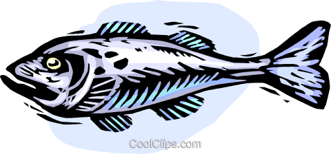 fish Royalty Free Vector Clip Art illustration vc065389