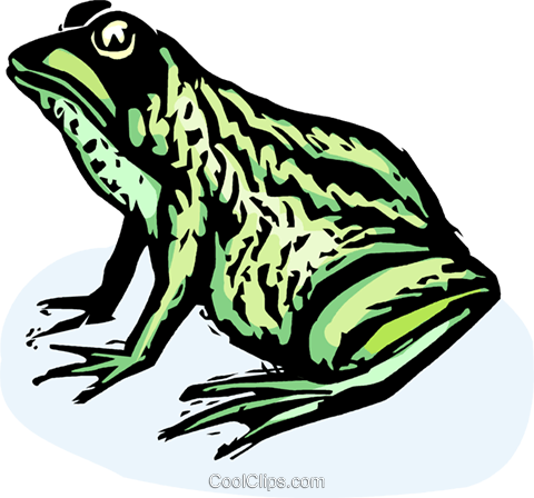 frog Royalty Free Vector Clip Art illustration vc065393