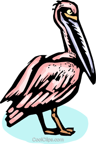 pelican Royalty Free Vector Clip Art illustration vc065397