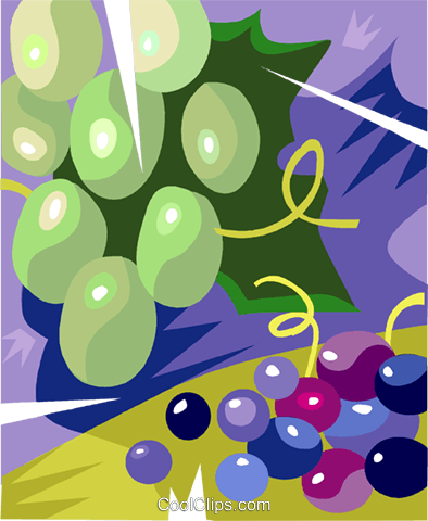 Green and red grapes Royalty Free Vector Clip Art illustration vc100572