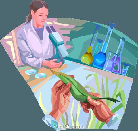 生物学 免版税矢量剪贴画插图