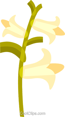 Flowers Royalty Free Vector Clip Art illustration vc110553