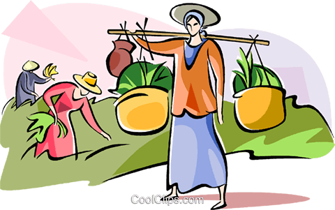 Woman Carrying Rice Plants Royalty Free Vector Clip Art illustration vc111057