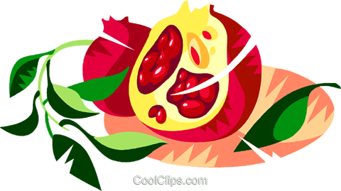 Pomegranate Royalty Free Vector Clip Art illustration vc111142