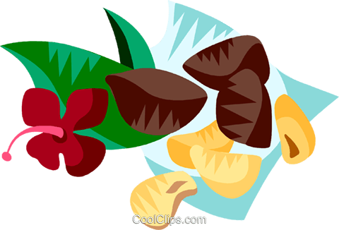 Brazil nuts Royalty Free Vector Clip Art illustration vc111189