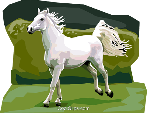 Lipicanec Lipizzan horse Royalty Free Vector Clip Art illustration vc111942
