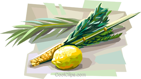 Lulav and Etrog for Sukkot Royalty Free Vector Clip Art illustration vc112107