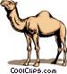 Camel Vector Clipart illustration