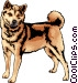 Shiba Inu Vector Clipart illustration