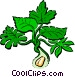 Peanut plant Vector Clipart graphic