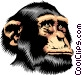 Chimpanzee Vector Clipart illustration