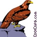 Eagle Vector Clipart illustration