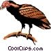 Turkey vulture Vector Clip Art picture