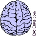 The human brain Vector Clipart illustration