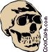 Skull Vector Clipart illustration