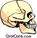 Human skull Vector Clip Art image