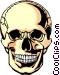 Human skull Vector Clip Art picture
