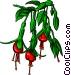 Bleeding-heart flower Vector Clipart image