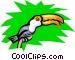 Toucan Vector Clip Art graphic