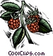 raspberries Vector Clip Art picture