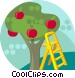 Apple tree with ladder Vector Clip Art graphic