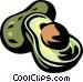 avocado Vector Clipart illustration