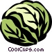 cabbage Vector Clipart graphic