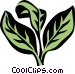 oregano Vector Clipart illustration