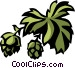 hops Vector Clip Art graphic