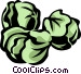Brussels sprouts Vector Clip Art image