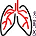 Human lungs Vector Clip Art graphic
