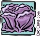 cabbage Vector Clip Art graphic