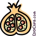 Pomegranate Vector Clipart illustration